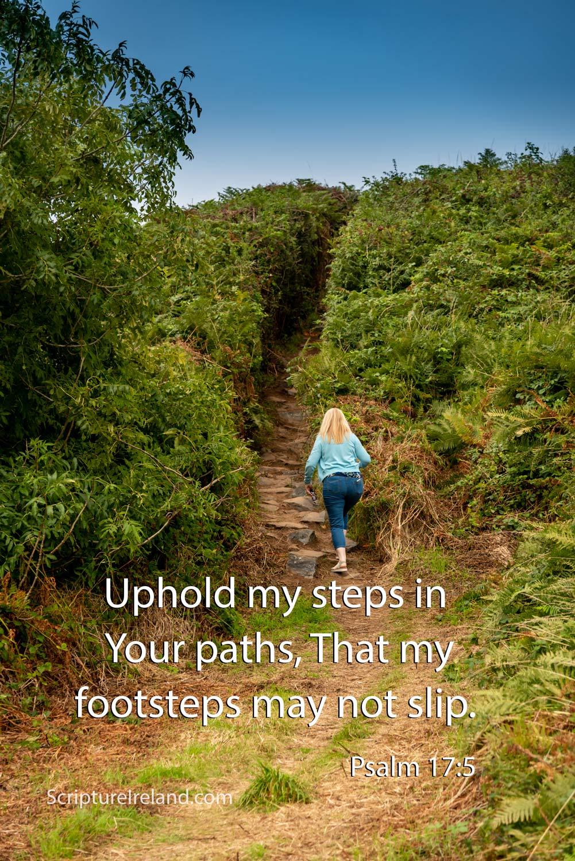 Path near Castlerock, County Antrim